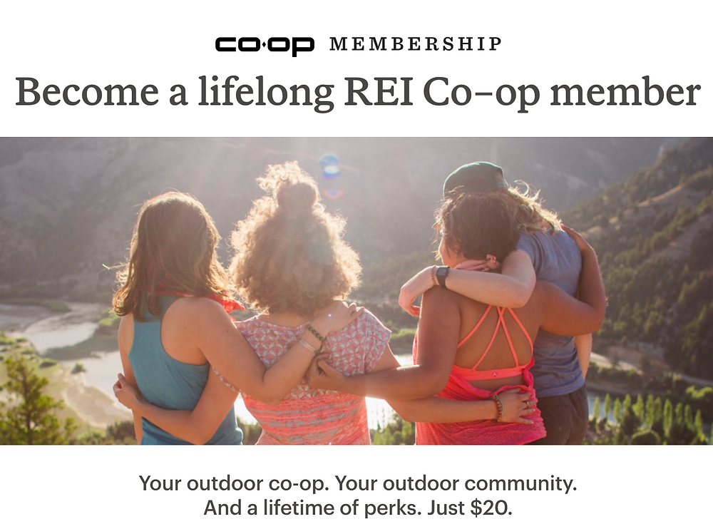REI Co-op membership promo with four people overlooking a valley