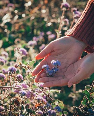 Sentir a natureza nos passeios sensoriais da Hearts into Nature
