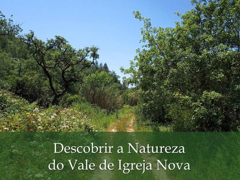 Descobrir a Natureza do Vale de Igreja Nova