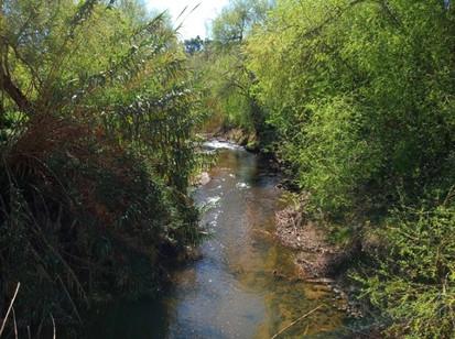 Rio Lizandro