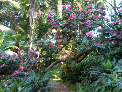 Jardim da Condessa no Parque da Pena
