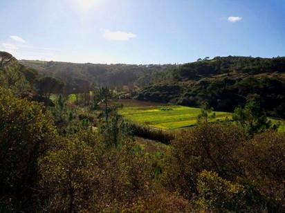 Vale do Rio Lizandro