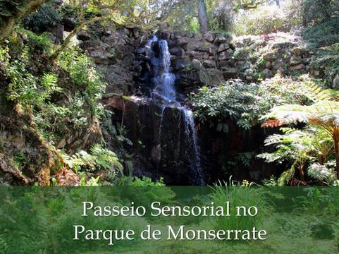 Passeio Sensorial no Parque de Monserrate