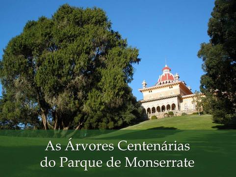 As Árvores Centenárias do Parque de Monserrate