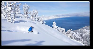 Skier1.png