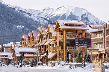 moose-hotel-suites-in.jpg