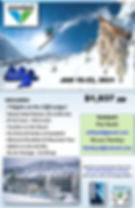 SnowbirdPoster.SB21CIN.jpg
