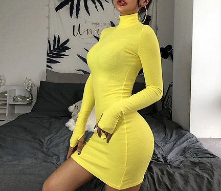 High Neck Long Sleeve Bodycon Mini Dress