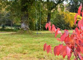 Kinlochlaich House Swing