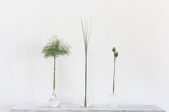 Chemistry Stem/Bud Vase