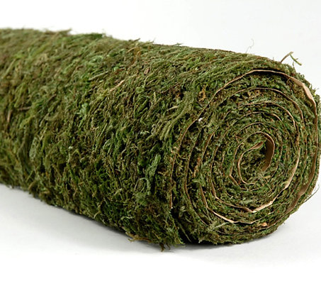 PRESERVED MOSS SHEETS