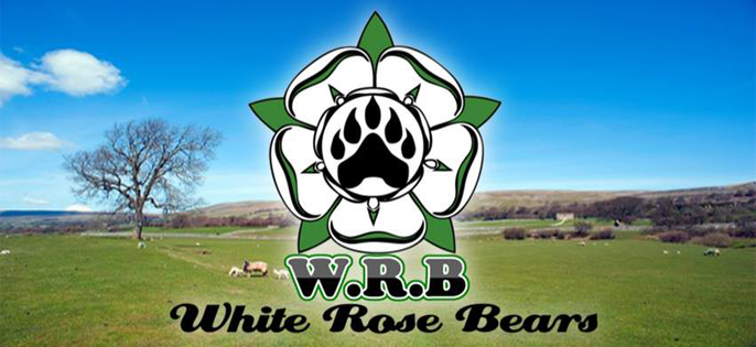 White Rose Bears