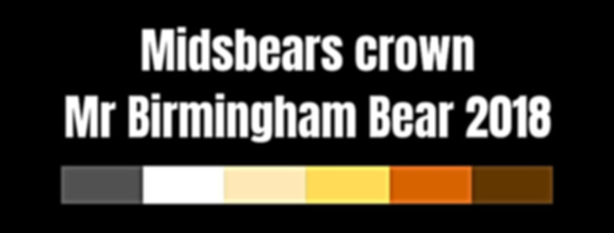 Midsbears crown Mr Birmingham Bear 2018.