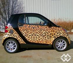 Cheetah Smart Car Wrap