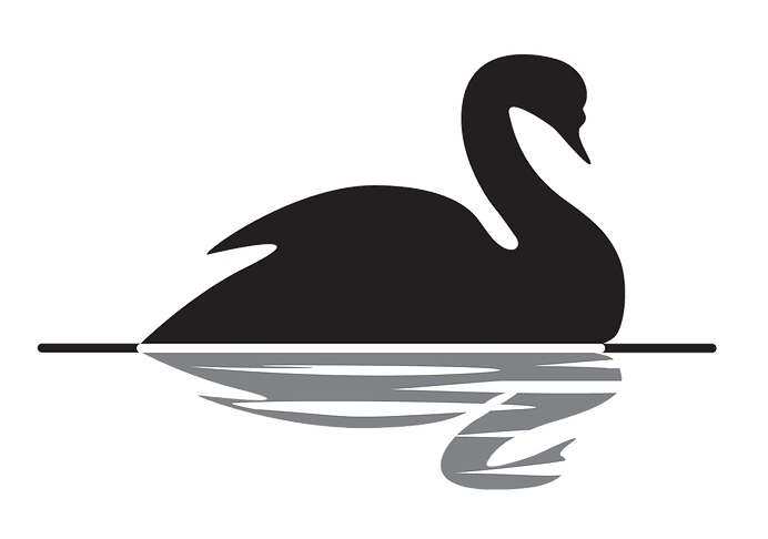 kisspng-the-black-swan-the-impact-of-the