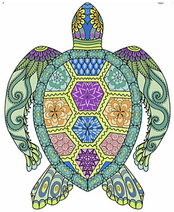 Sierra's Turtle.png