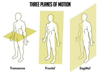 Understanding and Training the 3 Planes Of Motion