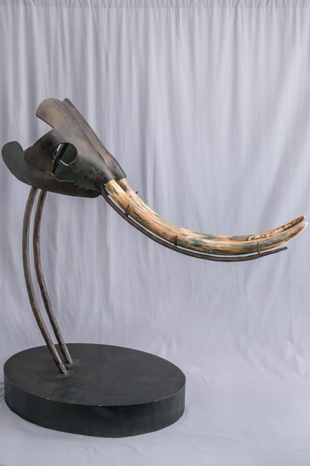 Mastodon Tusk in Steel Sculpture
