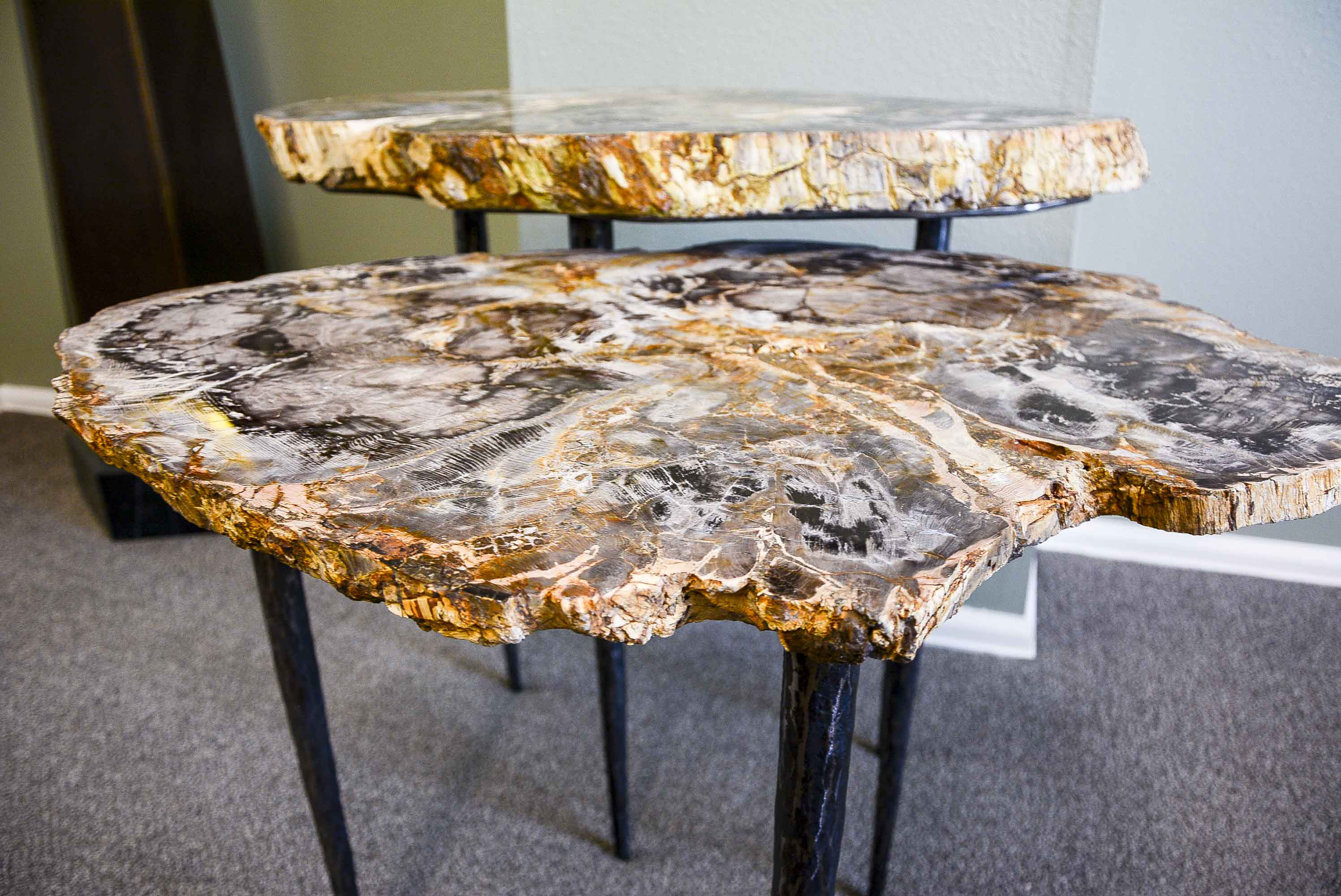Petrified Wood Nesting Tables