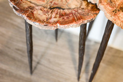 Petrified Nesting Tables