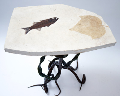 Green River Fossil Table