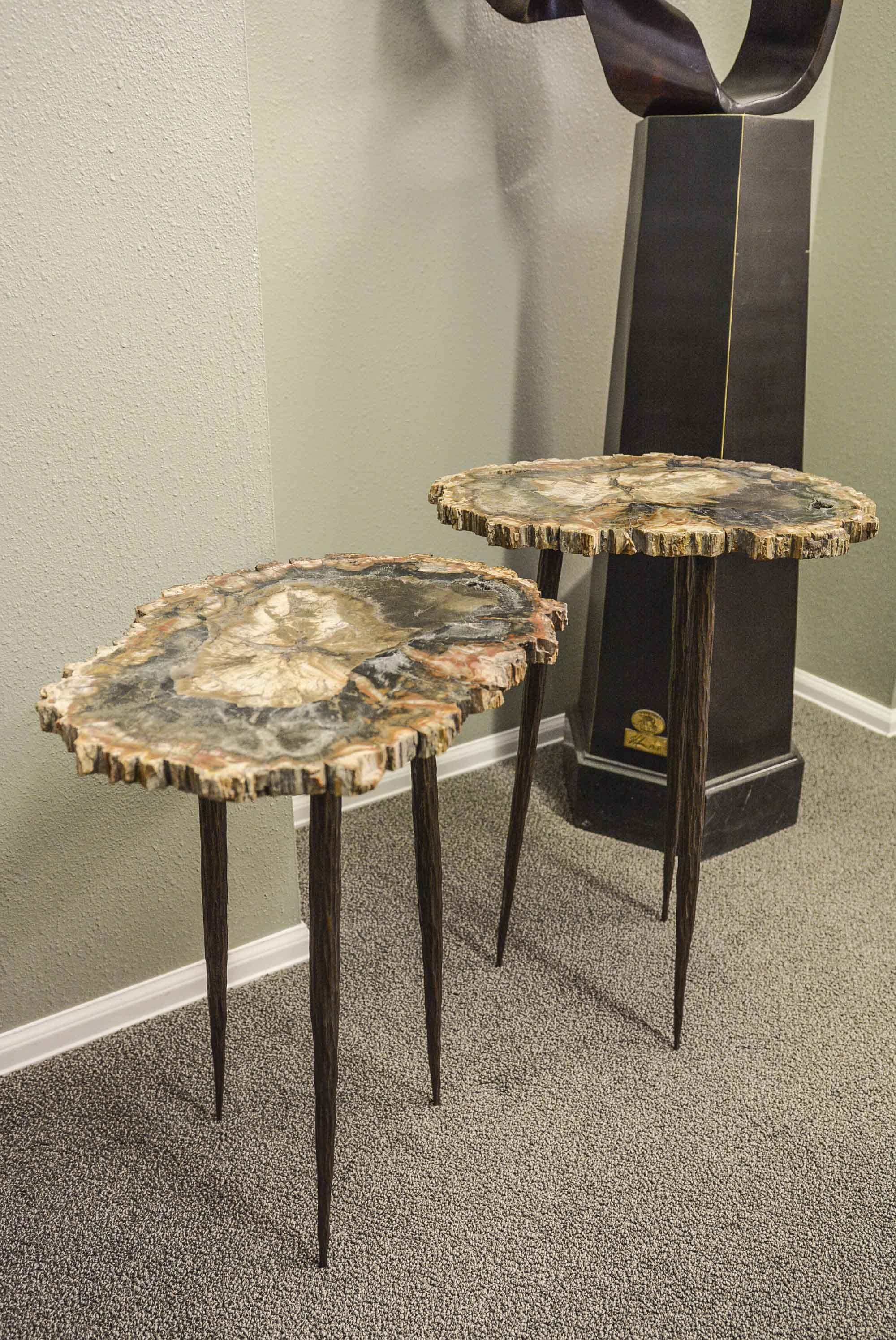 Petrified Wood Slabs Nesting Tables