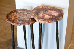 Petrified Wood & Forged Steel Tables