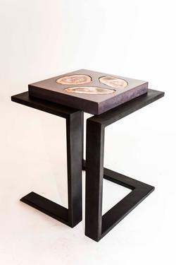 Concrete & Petrified Wood Table