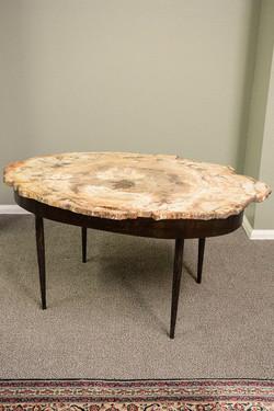 Petrified Wood & Steel Base Table