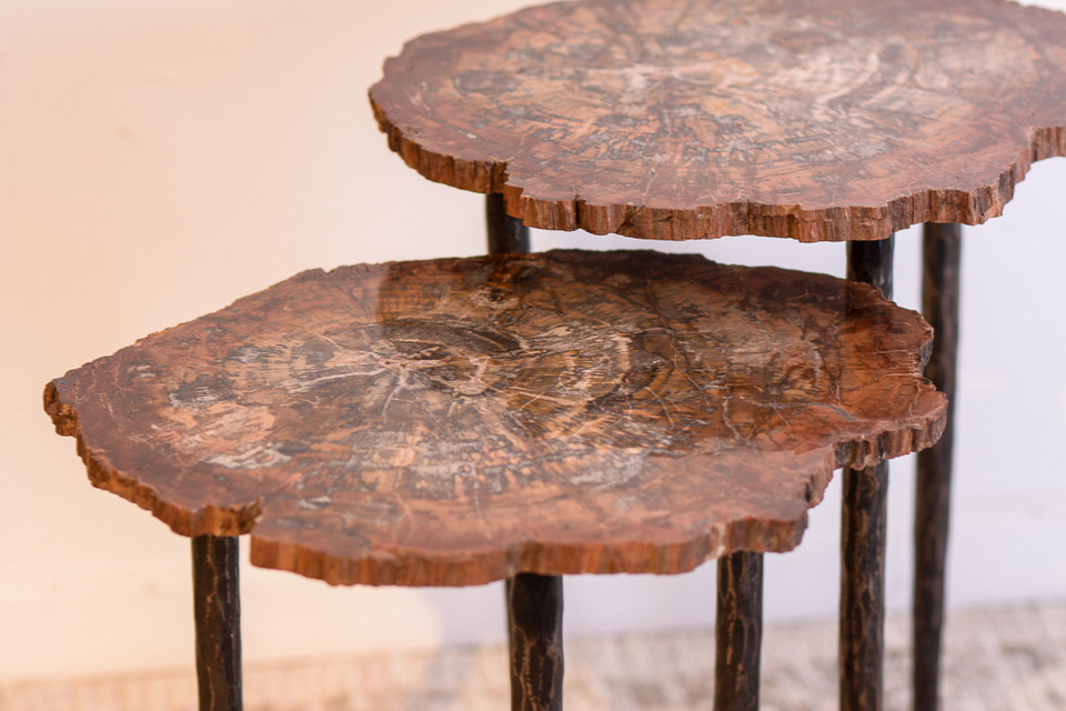 Petrified Wood & Steel Base Table