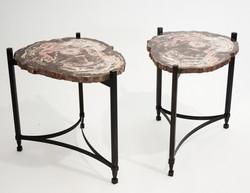 Petrified Wood & Steel Tables