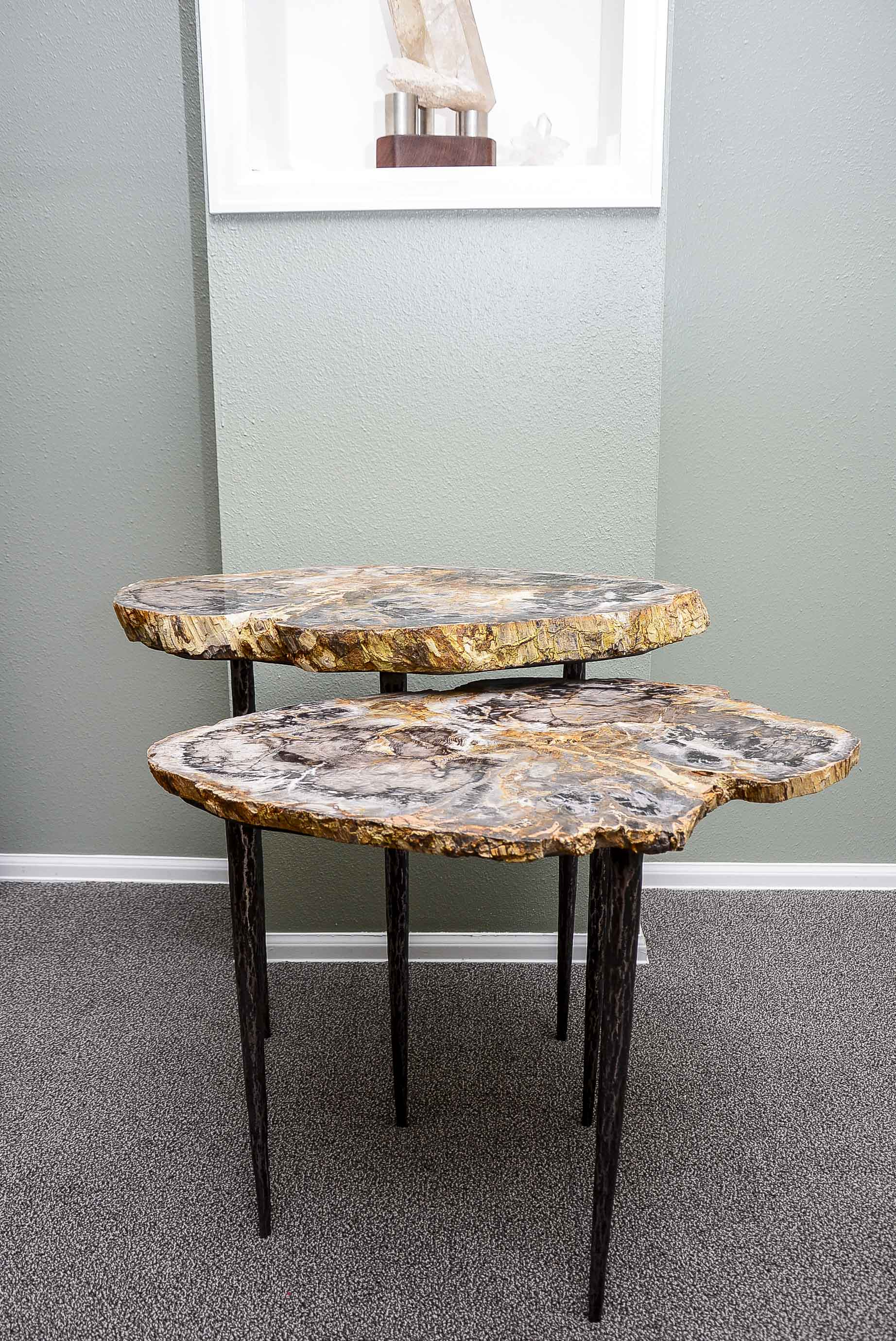 Petrified Wood & Steel Nesting Table