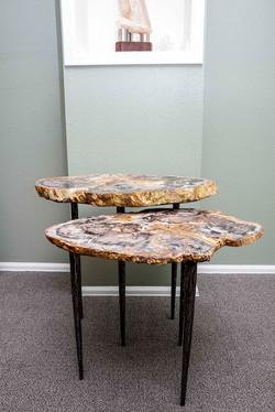 Petrified Wood & Steel Nesting Table