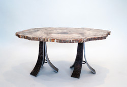 Petrified Wood & Forged Steel Table