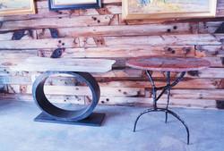 Selenite Table & Petrified Wood