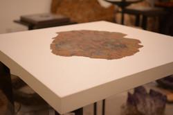 Cast Concrete & Petrified Wood Table