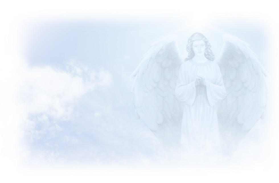 beth_Angel-Feather_edited.png