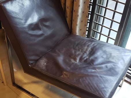 為狗狗維修椅子