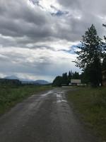 On the Nabesna Road