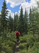 Dad Hiking the McKinley River Bar Trail