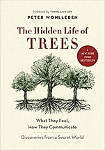 hidden life of trees.jpg