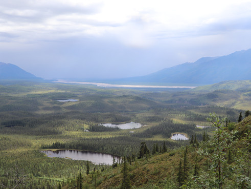 Adventures in Alaska: A Guide to the Nabesna Road in Wrangell-St. Elias National Park and Preserve