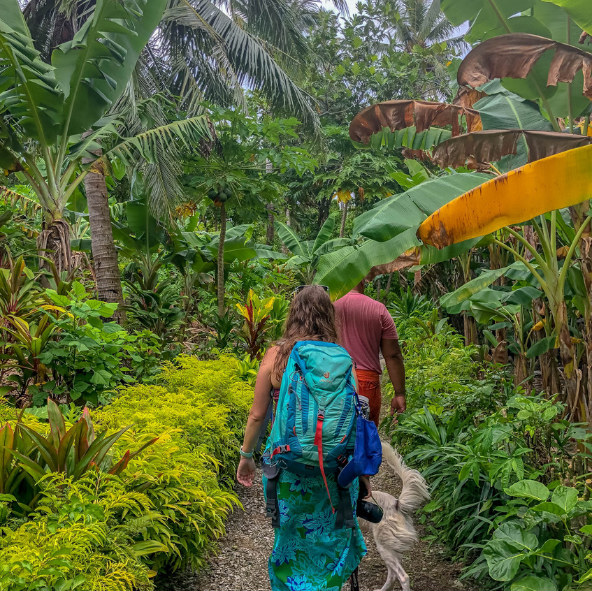 Hiking on Aunu'u