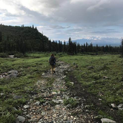 Caribou Creek Trail