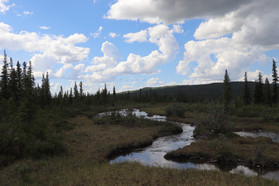 Denali National Park, McKinley River Bar Trail