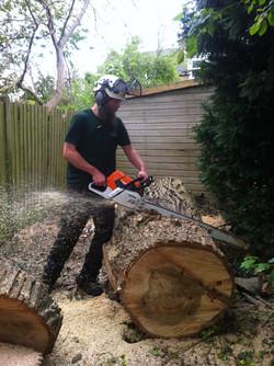 Alex sawing big pop