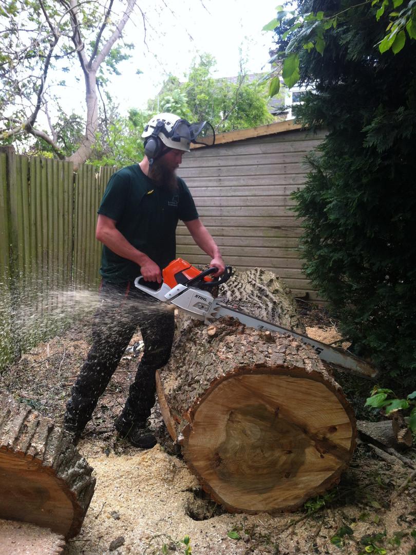 Alex sawing big pop.JPG