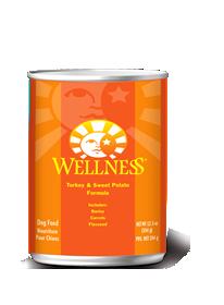 WellnessCanTurkey.png