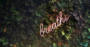 Balance | Wellness Starts From Creativity