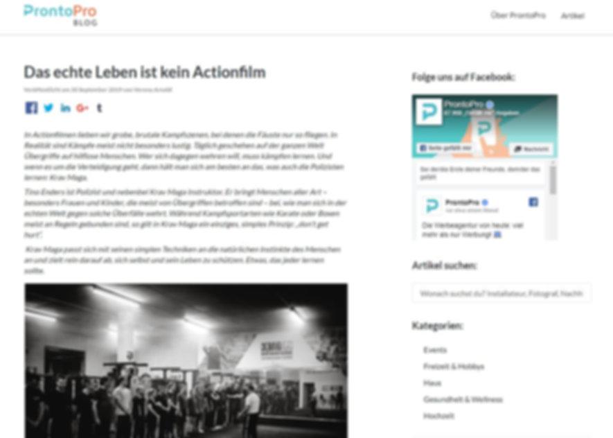 ProntoPro-Artikelvorschau.JPG